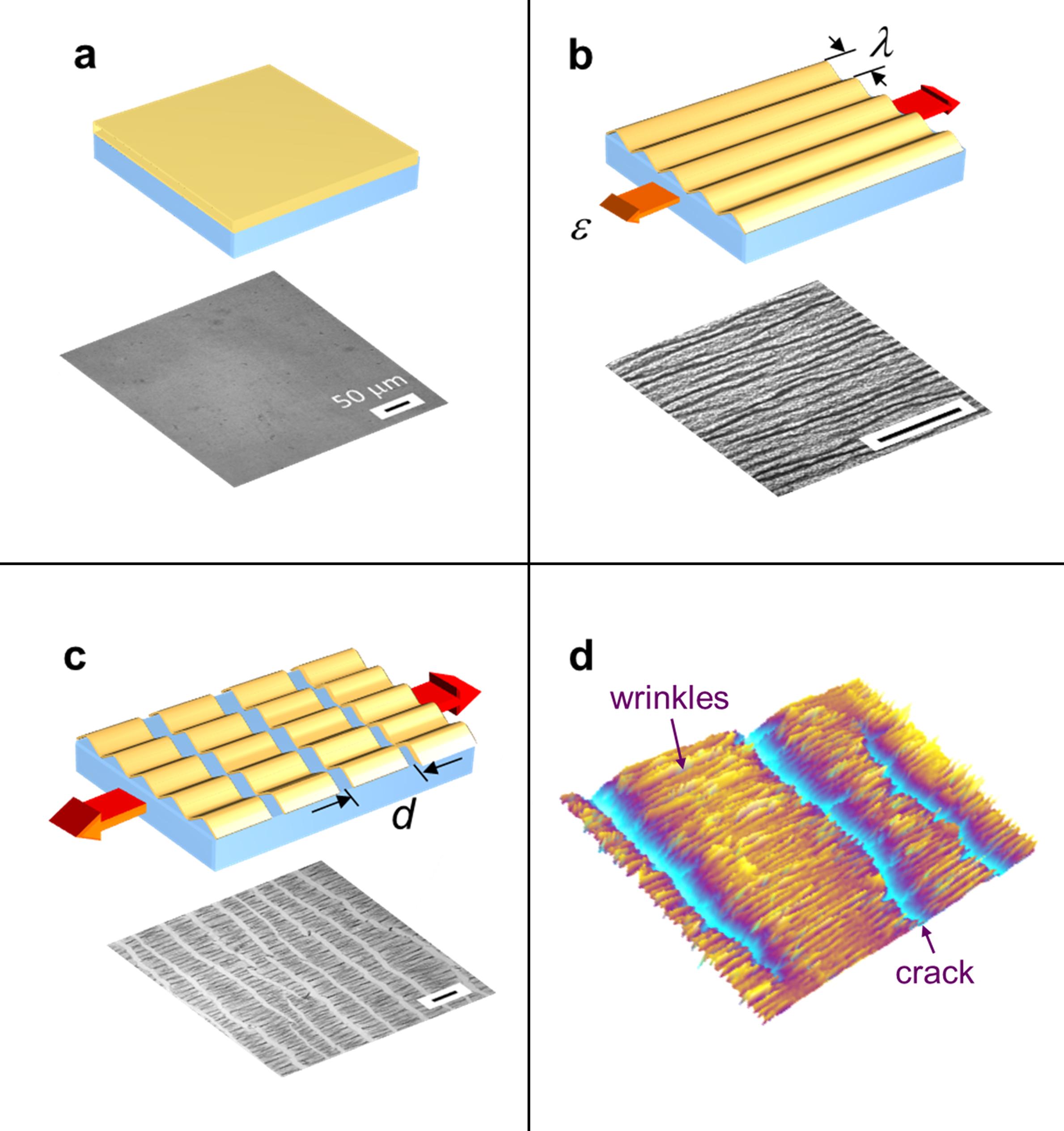 Nanomechanics: New Test Measures Key Properties Of Polymer