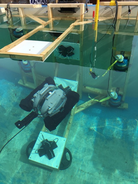 Underwater Test Apparatus with Water Robots