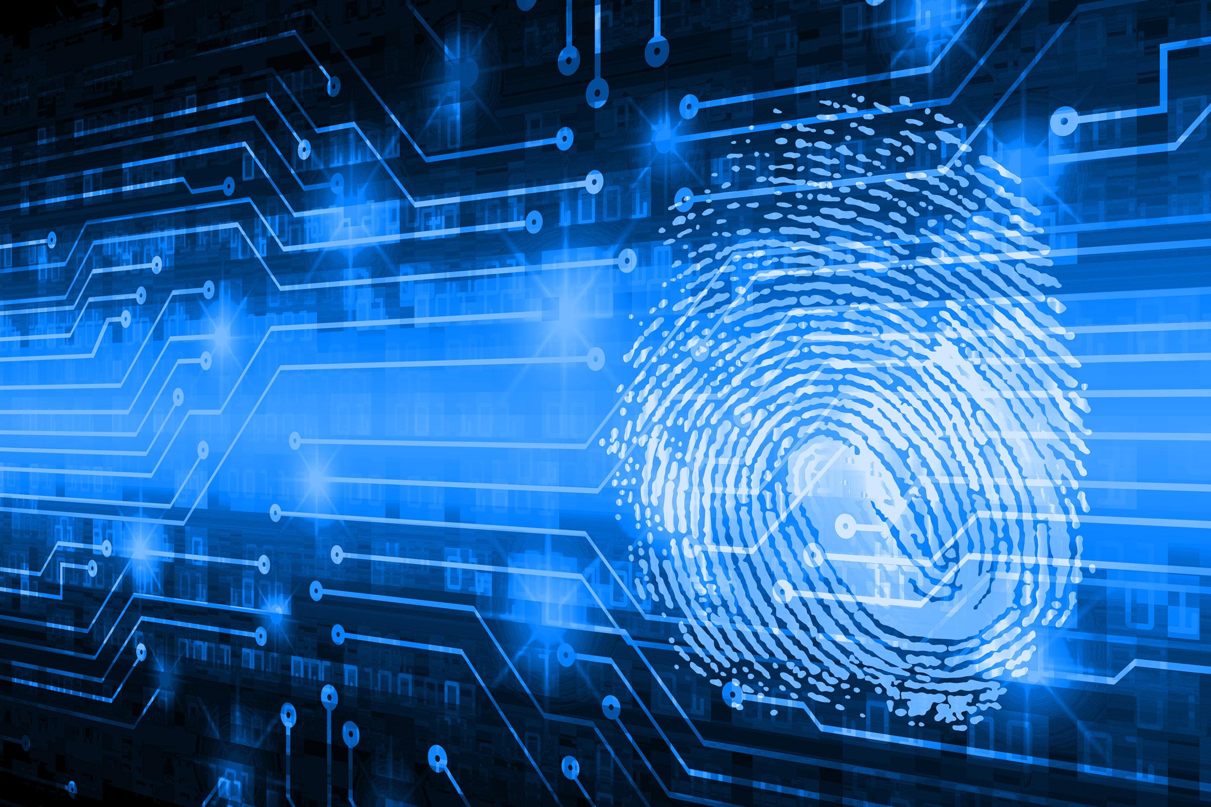 database of software  u201cfingerprints u201d expands to include
