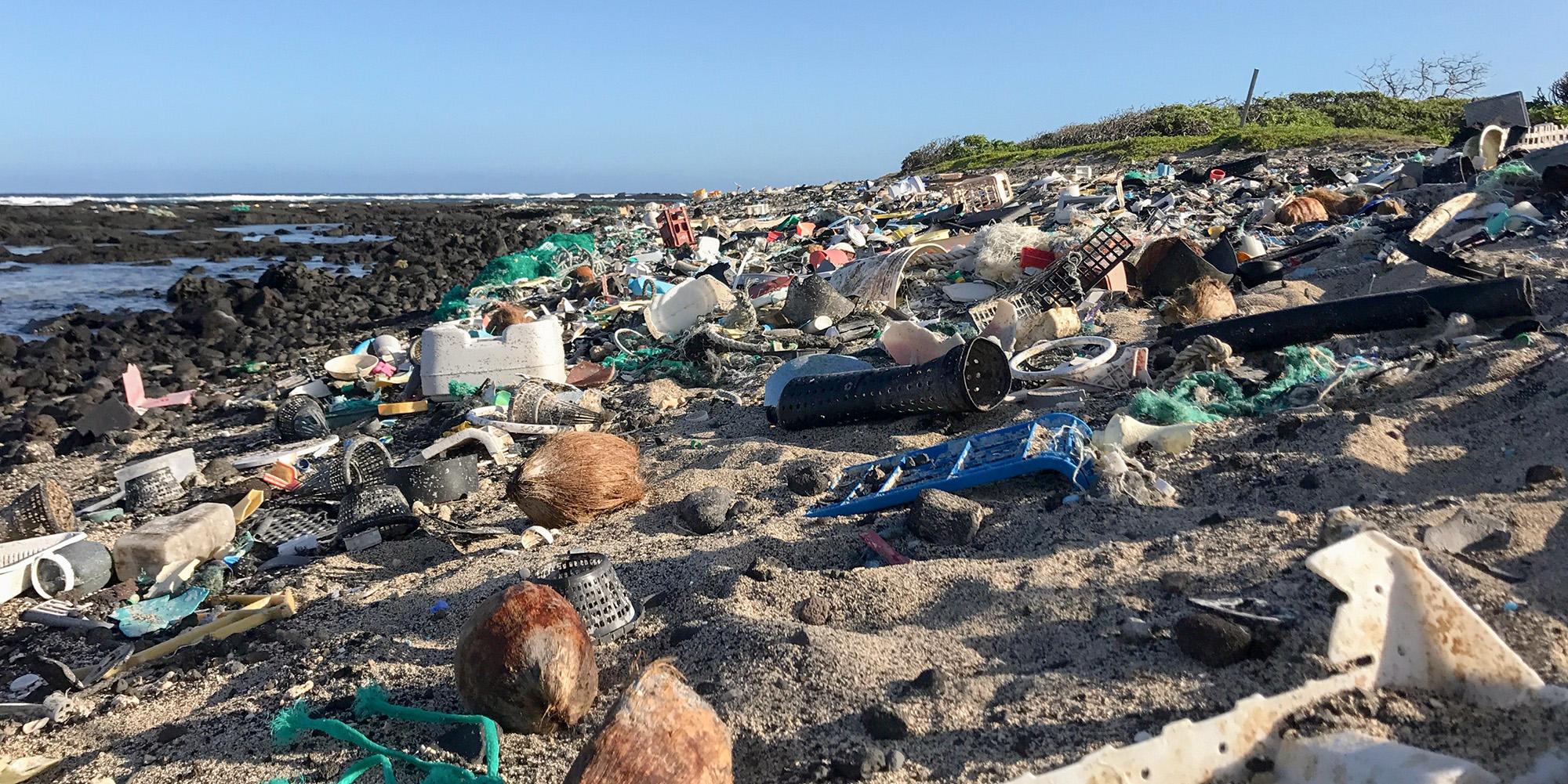 plastic strewn beach