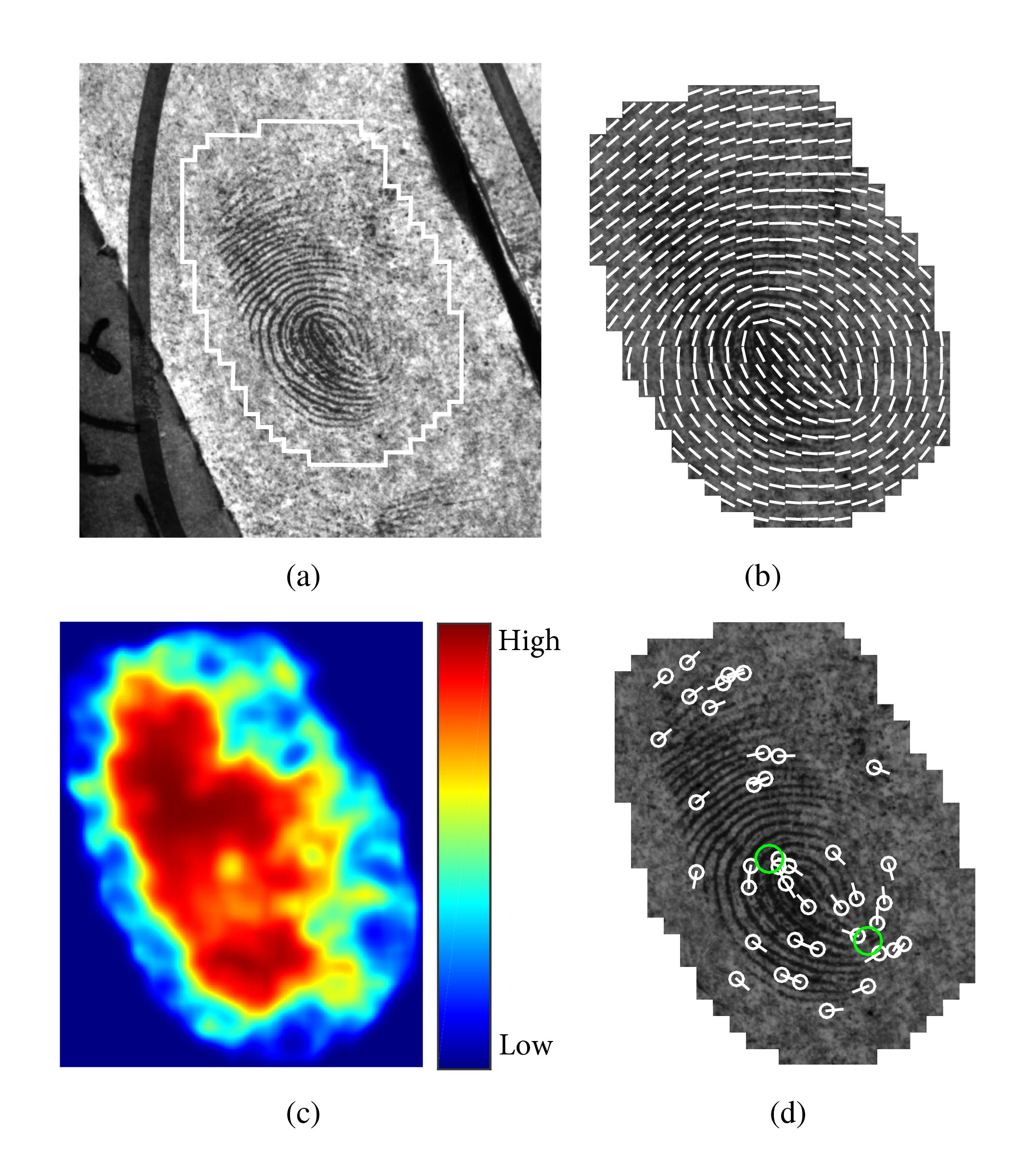 Scientists Automate Key Step in Forensic Fingerprint