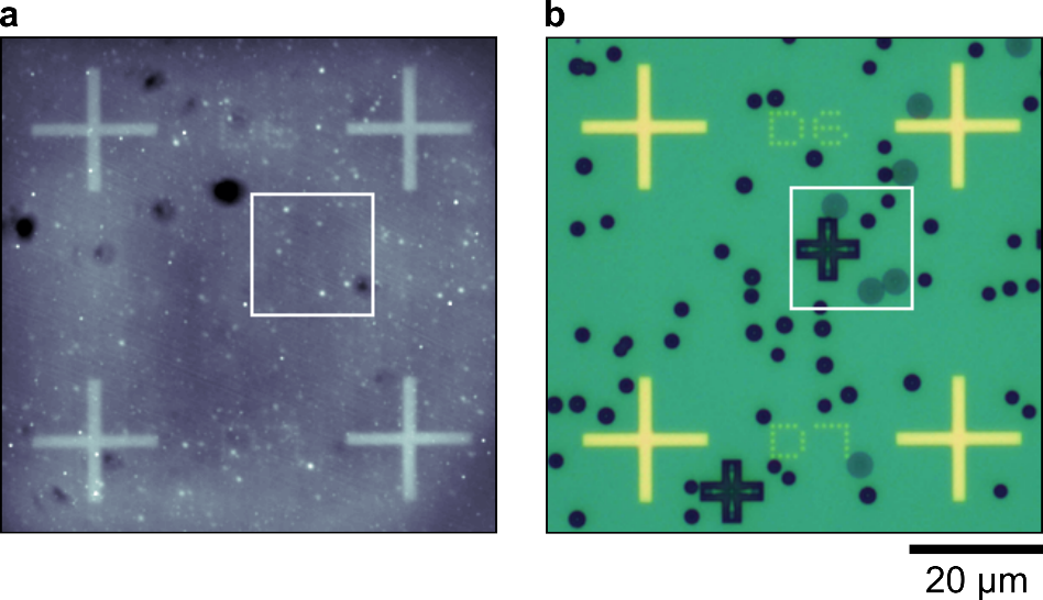 self-assembled quantum dots as seen by optical microscopy