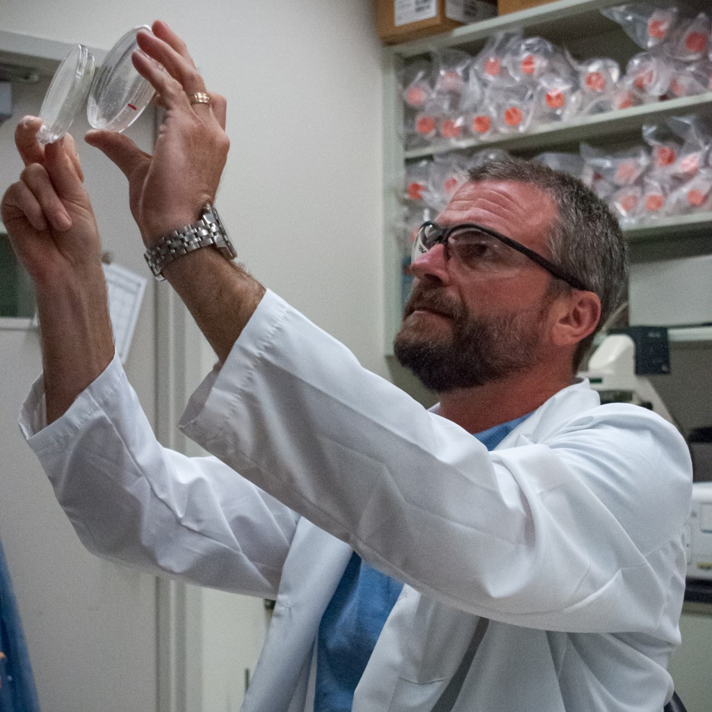 Highlight: Scott Jackson's Residing in a Microbial World