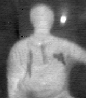 passive millimeter-wave image of threats concealed on a person.