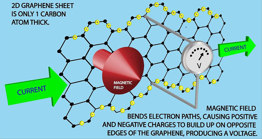 2D graphene sheet is only 1 carbon atom thick. Magnetic field bends electron paths, causing positive and negative charges to build up on opposite edges of the graphene, producing a voltage.