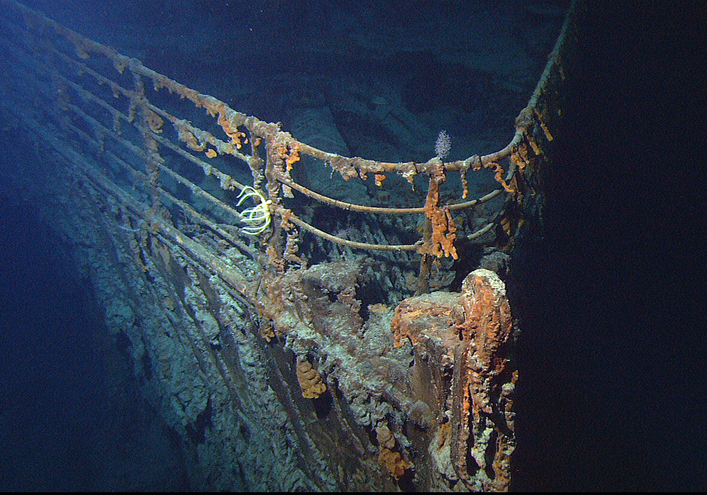 Photo of the bow of the RMS Titanic on the ocean floor with rust, sea growth