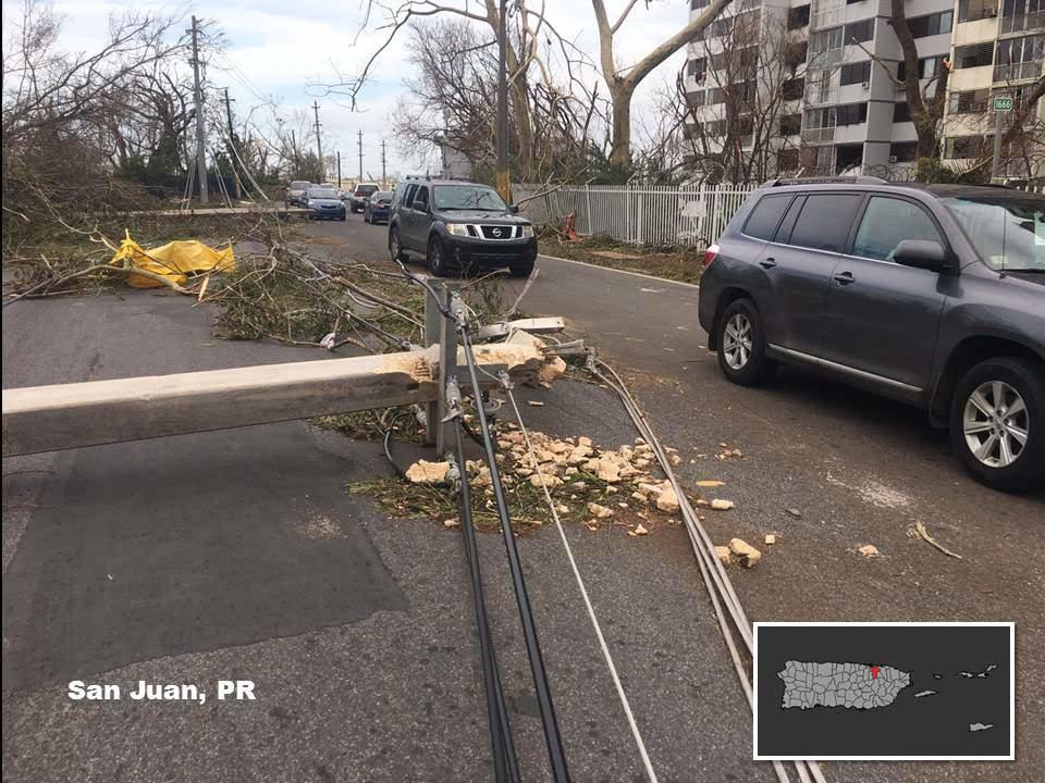 Downed Power Line in San Juan