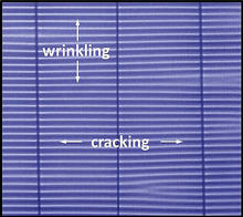 Optical image showing a thin membrane that has undergone both wrinkling and cracking.