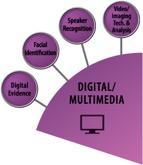 Digital/Multimedia wedge