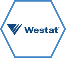 A hexagon, outlined in blue with the Westat team logo in the center.