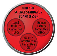 red circle with header Forensic Science Standards Board. Inside, three smaller red circles labeled Legal Resource Committee, Human Factors Committee and Quality Infrastructure Committee
