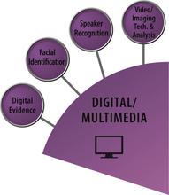 Digital Multimedia SAC icon