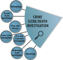 OSAC Crime Scene Death Investigation SAC lgog