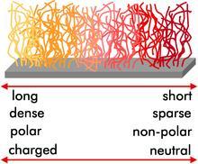 Graphic of Combi Polymer Brush