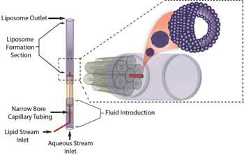 3D Liposome Formation Device