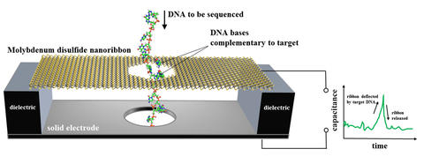 DNA sequencer based on an electronic motion sensor