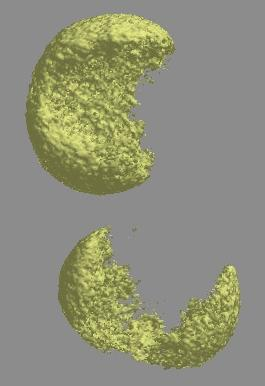 Rendered tomographic image of a healthy and aflatoxin infected corn kernel.