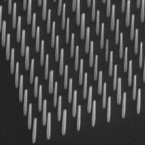 GaN nanowires