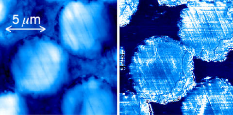 Images from NIST's atomic force microscope