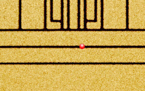 ion trap micrograph