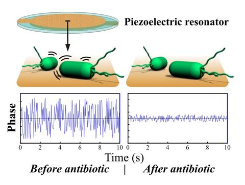 Piezoelectric Resonator