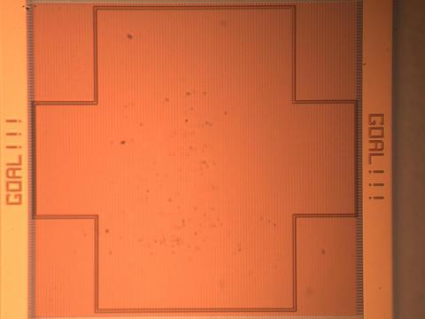 Photomicrograph of Nanosoccer Open Field