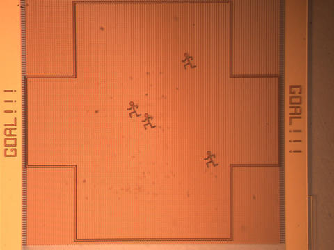 Photomicrograph of Nanosoccer Field with Defenders