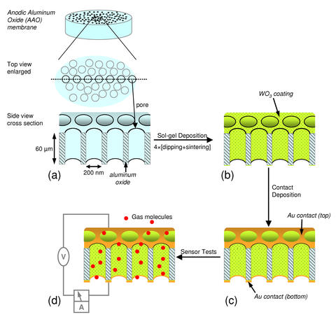 Metal-oxide nanotubes schematic diagram