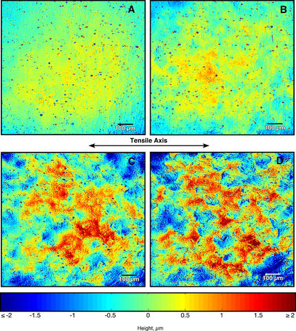 The four images (taken with scanning laser confocal microscopy) show variations in surface roughness of an aluminum alloy as produced by increasing amounts of strain