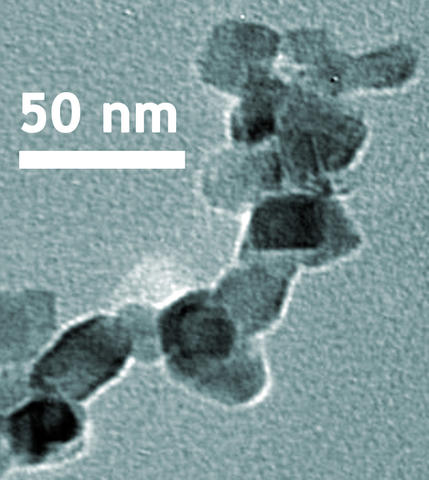 TEM image shows the nanoscale crystalline structure of titanium dioxide in NIST SRM 1898