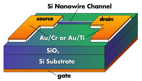 A schematic diagram of the NIST nanowire transistor