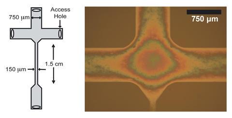 left: schematic of nanofluidic device. right: photomicrograph