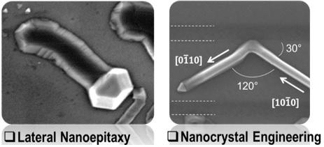 surface_directed_nanochannel_formation_and_their_fluid_transport_properties