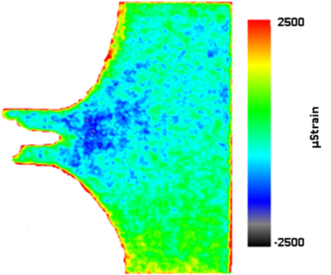 imaging of radiation measurements