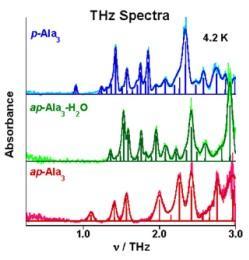 THz spectra of trialanine