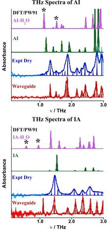 THz absorption spectra