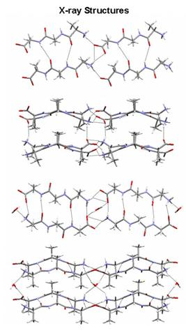 X-ray structures of trialanine