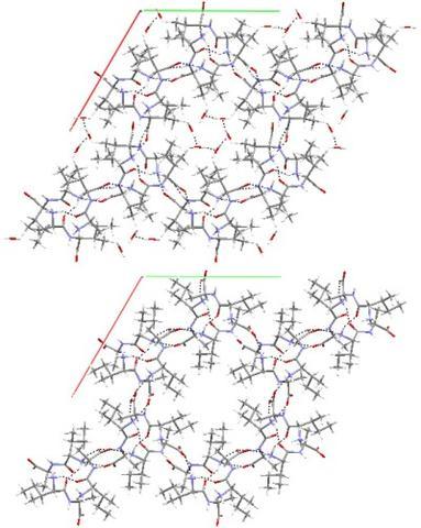 X-ray of nanotubes