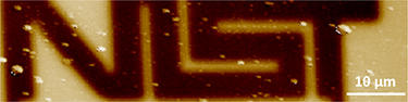 Non-destructive EFM subsurface image on metal lines buried in 800nm thick glass, full scale: 35 degree. The white bar is 10 µm.