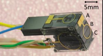 Fiber magnetometer