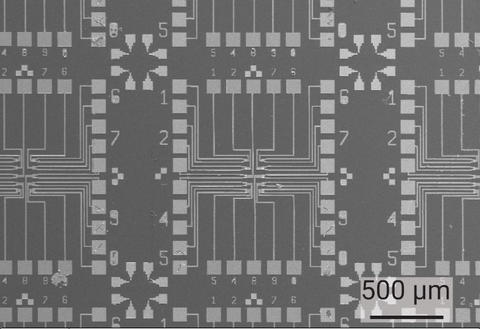 Scanning electron micrograph of arrays of independently controllable MoS2 field effect transistors for biochemical sensing.