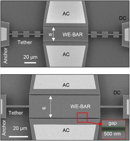 scanning electron microscope image