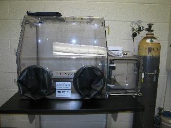 Coy Laboratory Products Glovebox