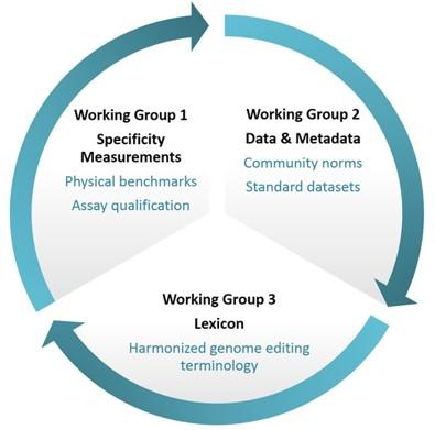 Gene editing working group