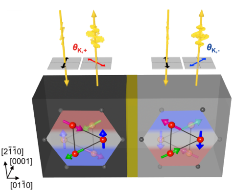 The image shows two regions with opposing chiral antiferromagnetic domains (gray/black) in the chiral antiferromagnet Mn3Sn.