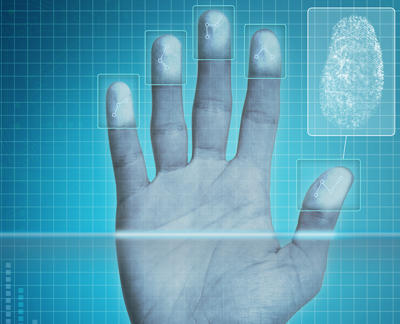 hand showing fingerprints