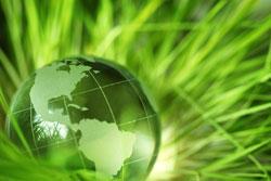 Glass globe nestled in green grass.