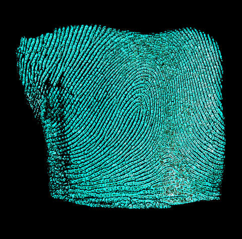 Do You Have What It Takes to be a Forensic Fingerprint Examiner? | NIST