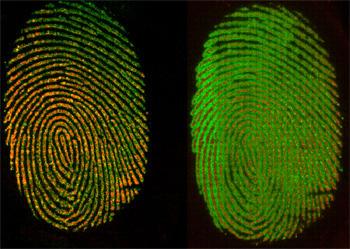 Chemical imaging of a fingerprint