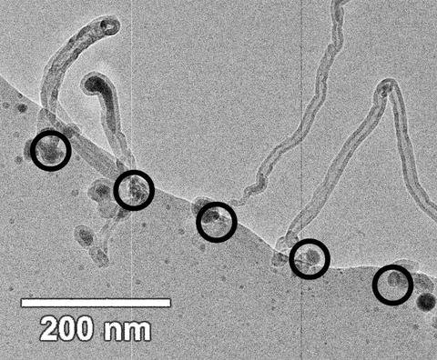 Bright field transmission electron micrograph showing carbon nanotubes grown from an array of equally-sized iron catalyst particles created by electron beam-induced decomposition of a diiron nonacarbonyl precursor.